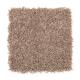 Stylish Silhouette in Malt - Carpet by Mohawk Flooring