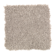 Soft Attraction I in Gazelle - Carpet by Mohawk Flooring