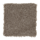 Classical Design I in Pecan Bark - Carpet by Mohawk Flooring