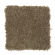 Comfortable Creation II in Wood Ash - Carpet by Mohawk Flooring