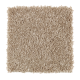 Graceful Beauty in Haven - Carpet by Mohawk Flooring