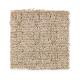 Sheer Genius in Gentle Doe - Carpet by Mohawk Flooring