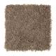 Brookfield Heights in Dakota - Carpet by Mohawk Flooring