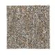Memorabilia in Tortoiseshell - Carpet by Mohawk Flooring