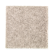 Top Card in Nomad - Carpet by Mohawk Flooring