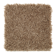 Rare Details in Cork - Carpet by Mohawk Flooring