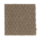 Smartly Chosen in Sourwood - Carpet by Mohawk Flooring