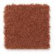 Chic Appearance in Pumpkin Pie - Carpet by Mohawk Flooring