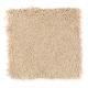 Coastal Path II in Parchment - Carpet by Mohawk Flooring