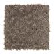 Inspiring Landscape in Cocoa - Carpet by Mohawk Flooring