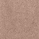 Comfort Zone in Golden Key - Carpet by Mohawk Flooring