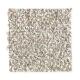 Baycliff in Carmel Apple - Carpet by Mohawk Flooring