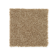 Active Spirit in Leather Bound - Carpet by Mohawk Flooring