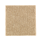 Natural Treasure in Brushed Suede - Carpet by Mohawk Flooring