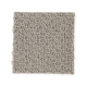 Main Interest in Hazy Taupe - Carpet by Mohawk Flooring