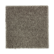 Luxurious Desire in Garden Bramble - Carpet by Mohawk Flooring