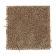 Ideal Home in Terrain - Carpet by Mohawk Flooring