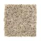 Exclusive Beauty in Burlap - Carpet by Mohawk Flooring