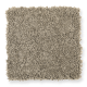 Chic Appearance in Magnolia Bud - Carpet by Mohawk Flooring