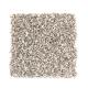 Trailblazer in Sugar White - Carpet by Mohawk Flooring