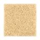 Sassy Arrangement in Pineapple - Carpet by Mohawk Flooring
