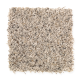 Island Delight II in Mineral - Carpet by Mohawk Flooring