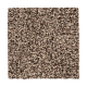 Soft Accolade II in Perfect Beige - Carpet by Mohawk Flooring