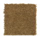 Comfortable Creation II in Aged Cognac - Carpet by Mohawk Flooring