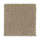 Greenhurst in Pecos - Carpet by Mohawk Flooring