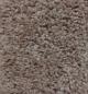 Comfort Zone in Sierra - Carpet by Mohawk Flooring