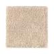 Serene Sierra in Soapstone - Carpet by Mohawk Flooring