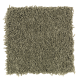 Sassy Arrangement in Cucumber - Carpet by Mohawk Flooring