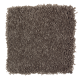 Graceful Glamour in Mineral Brown - Carpet by Mohawk Flooring