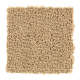 Sharp Composition in Torch Light - Carpet by Mohawk Flooring