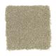 Beach Club IV in Botanical - Carpet by Mohawk Flooring