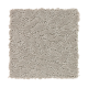 Soft Balance in Taupe Haze - Carpet by Mohawk Flooring