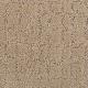 Luxurious Debut in Grande Oak - Carpet by Mohawk Flooring