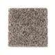 Color Medley I in Porcelain Shale - Carpet by Mohawk Flooring