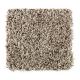 Subtle Influence II in Shadewood - Carpet by Mohawk Flooring
