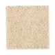 True Elegance II in Finishing Touch - Carpet by Mohawk Flooring