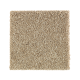 Nature's Appeal I in Hearth Beige - Carpet by Mohawk Flooring