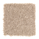 Modern Ease in Cobweb - Carpet by Mohawk Flooring