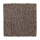 Continuing Vision in Tweed Jacket - Carpet by Mohawk Flooring