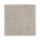 Luxurious Class in Windsor Castle - Carpet by Mohawk Flooring