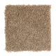 Exotic Fantasy in Cedar Shingles - Carpet by Mohawk Flooring