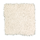 Premier Look in Tibetan Jasmine - Carpet by Mohawk Flooring