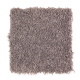 Premier Look in Perfect Taupe - Carpet by Mohawk Flooring