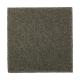 Absolute Elegance II in Pine Needle - Carpet by Mohawk Flooring