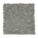 Dashing Appeal in Shadow - Carpet by Mohawk Flooring