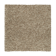 Relaxed Comfort I in Flaxen - Carpet by Mohawk Flooring